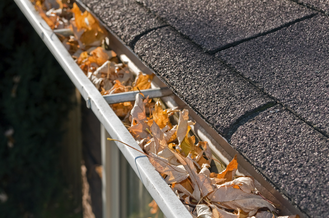 WE CAN KEEP YOUR GUTTERS CLEAN